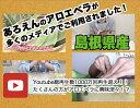 【お徳用】【食用アロエ】出雲産アロエベラ「まいにちアロエ」500g×8パック(冷蔵カットアロエ)