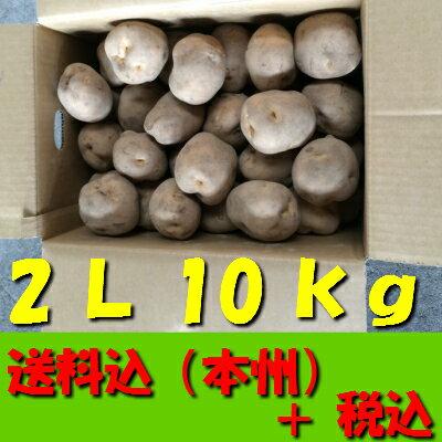 【送料無料 税込】北海道産じゃが芋 2L10kg(業務用 じゃがいも ジャガイモ ポテト 玉葱 タマネギ たまねぎ オニオン 常備野菜 箱売り 特用 セット)上越フルーツ