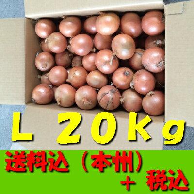 【送料無料 税込 業務用】北海道産他玉ねぎ L20kg(玉葱 タマネギ たまねぎ じゃがいも ジャガイモ ポテト オニオン 常備野菜 箱売り 特用 セット)上越フルーツ