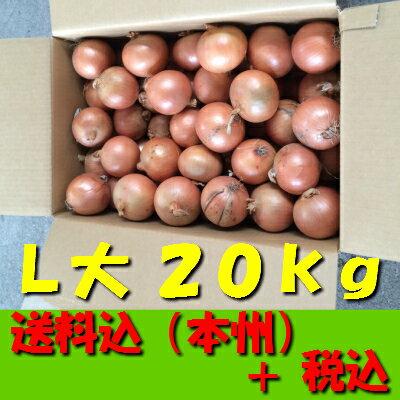 【送料無料 税込 業務用】北海道産他玉ねぎ L大20kg(玉葱 タマネギ たまねぎ じゃがいも ジャガイモ ポテト オニオン 常備野菜 箱売り 特用 セット)上越フルーツ
