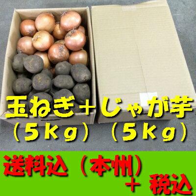 【送料無料 税込】北海道産玉ねぎL大5kg + じゃが芋2L5kg(業務用 玉葱 タマネギ たまねぎ じゃがいも ジャガイモ ポテト オニオン 常備野菜 箱売り 特用 セット)上越フルーツ