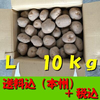 【送料無料 税込】北海道産じゃが芋 L10kg(業務用 箱売 玉葱 タマネギ たまねぎ じゃがいも ジャガイモ ポテト オニオン 常備野菜 箱売り 特用 セット)上越フルーツ
