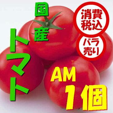 【税込 バラ売り】新潟・群馬県産他 トマト AM 1個(トマト とまと 桃太郎 ももたろう リコピン りこぴん)上越フルーツ