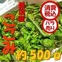 【税込 バラ売り】新潟県産 地元の採れたて こごみ 約500...