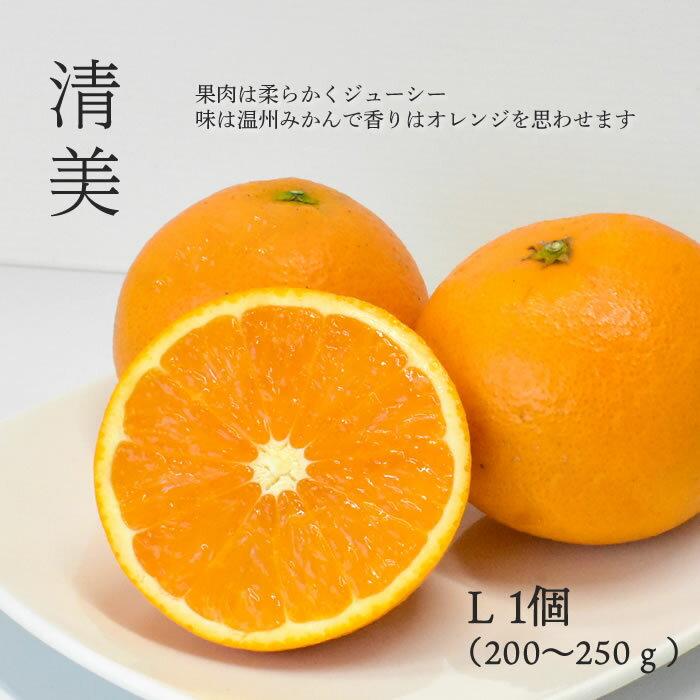 https://thumbnail.image.rakuten.co.jp/@0_mall/j-fruit/cabinet/bara/kiyomi/kiyomi01.jpg