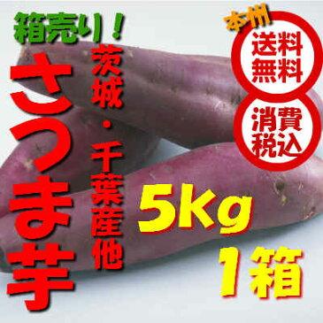 【送料無料 箱売 消費税込】茨城・千葉産他 さつま芋 2L5kg(約8本)1箱 上越フルーツ