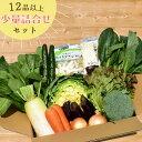 【翌営業日発送(正午まで注文)& 本州送料無料!】定番 野菜