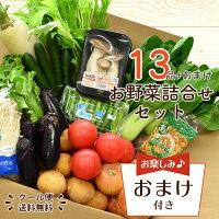 【送料無料!】野菜詰め合わせセット13品以上<クール便>|野菜詰合せ詰め合わせ野菜セット新潟旬上越フルーツ