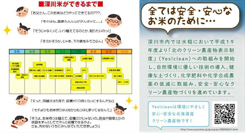 【平成30年産】北海道深川市産 YES!Clean ななつぼし 玄米 30kg ※一部地域を除く