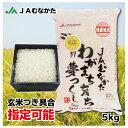 【送料無料】玄米 注文を受けてから精米(発送日に精米します)JAむなかた産「夢つくし」5kg JAむなかた直売所直送 お米 ごはん 玄米つき具合指定できます