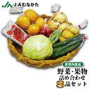 【送料無料】旬の野菜と果物の詰め合わせセット8品 直売所直送 JAむなかた フルーツ 野菜セット