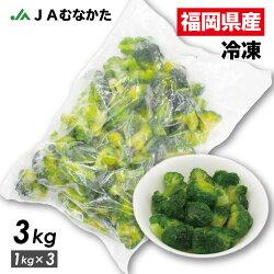 【送料無料】大容量1kg福岡県産冷凍ブロッコリーJAむなかた直送加工用業務用
