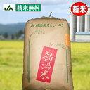 新米令和元年 ≪新米≫お米【精米無料】【特別栽培米】令和元年