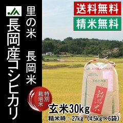 長岡産コシヒカリ(ひかり一番地)特別栽培米