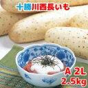 長いも(十勝川西長いも)北海道産長芋 A2Lサイズ 2.5kg(3本入)令和2年産