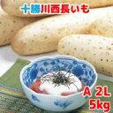 長いも(十勝川西長いも)北海道産長芋 A2Lサイズ 5kg(6本入)令和2年産