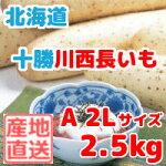 長いも十勝川西北海道産長芋