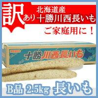 長いも【訳あり】(十勝川西長いも)北海道産長芋 B2Lサイズ 2.5kg(3〜4本入り)平成29年産 ご家庭用
