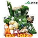 【送料無料】アグリックス12品以上保証セット 野菜詰合せセット苦手野菜申告可