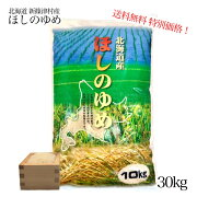 令和元年産北海道「新しのつ米」ほしのゆめ