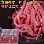 国産紅しょうが(宮崎県産)50g×4袋セット梅酢仕立てシャキシャキとした食感と生姜の辛み漬物ポイント消化ご飯のお供食品メール便
