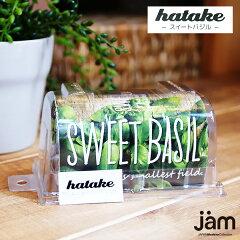 hatake スイートバジル・ビニールハウスをミニチュアにデザインされた、かんたん卓上栽培キット