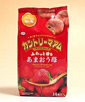 あまおう苺を使用した、期間限定のカントリーマアムです。あまおう苺の果汁に加え、あまおう苺...