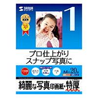 サンワサプライインクジェット写真印画紙・特厚JP-EP2NA4