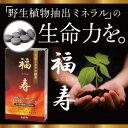 ミネラル酵素 福寿(ふくじゅ)(120粒入)送料無料【ポイント 倍〜2...