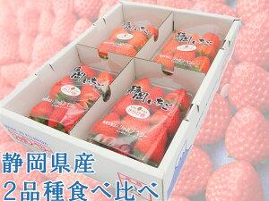 ポイント15倍 送料無料いちご 2品種 食べ比べセット 270g 4パック 静岡県産 1kg 苺 イチゴ