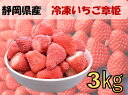 送料無料 冷凍いちご 静岡県産 章姫 3kg 国産