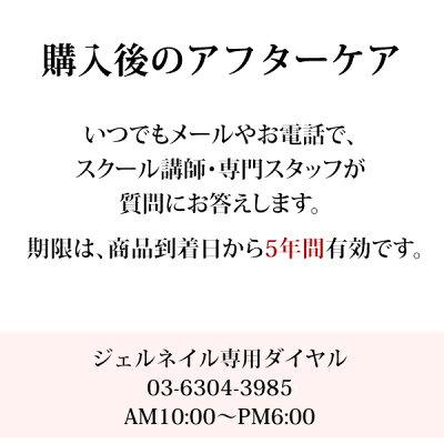 日本製ジェルネイルキットLED38w2