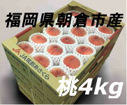 【送料無料】◆桃約4kg◆15〜12玉入り福岡県朝倉産
