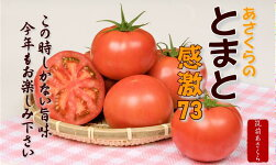 トマトメイン