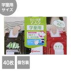 【アイリスオーヤマ】安心・清潔マスク(学童用)40枚入PK-AS40G