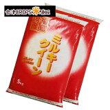 ミルキークイーン 5kg×2袋 白米 10kg 福島県 令和元年産 送料無料 あす楽_土曜営業