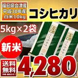 【新米】コシヒカリ 5kg×2袋 白米 10kg (会津産) 30年産 送料無料 通常発送 【10月限定特価】