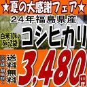 3480円 【送料無料】24年福島県産コシヒカリ白米10kg(5kg×2)