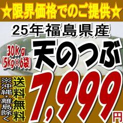 【送料無料】25年福島県産天のつぶ白米 30kg(5kg×6袋)【tohoku】【こしひかり】【米】【10kg】
