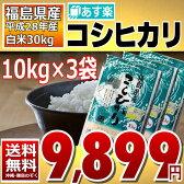 【平成28年産】福島県産 コシヒカリ 精米済み白米30kg(10kg×3) 【送料無料】