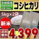 新米 29年産 コシヒカリ 10kg(5kg×2) (茨城県産) 白米【送料無料】【通常発送】