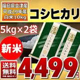 コシヒカリ 5kg×2袋 白米 10kg (会津産) 29年産 送料無料 通常発送