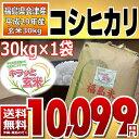 楽天コシヒカリ 調整済玄米キラッと玄米 30kg (会津産) 29年産 調製済玄米 送料無料 通常発送
