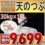 天のつぶ キラッと玄米 30kg 福島県 29年産 調製済玄米 送料無料【通常発送】