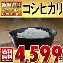 コシヒカリ 5kg×2袋 白米 10kg (新潟県) 29年産 送料無料 通常発送