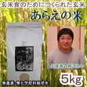 【送料無料】「あらえの米」22年栃木県産コシヒカリ玄米5kgJAS有機栽培米(無農薬・無化学肥料栽培)