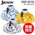 スリクソンアイスバッグGGF-22101