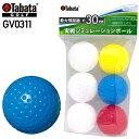 【ゴルフ】【トレーニング】タバタゴルフ Tabata GOLF ソフトボール GV0311【練習ボール】