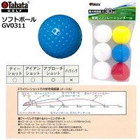 タバタソフトボールGV0311
