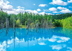 APP-500-263 風景 美瑛白金(びえいしろがね)の青い池 500ピース パズル Puzzle ギフト 誕生日 プレゼント 誕生日プレゼント